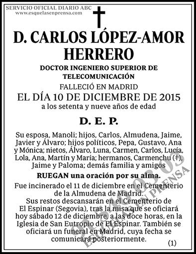 Carlos López-Amor Herrero